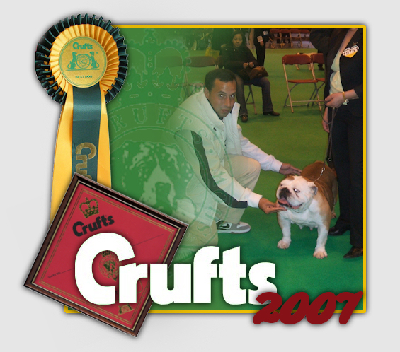 Crufts 2007 Bulldog Ingles Canchas Mahan